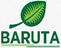 Baruta